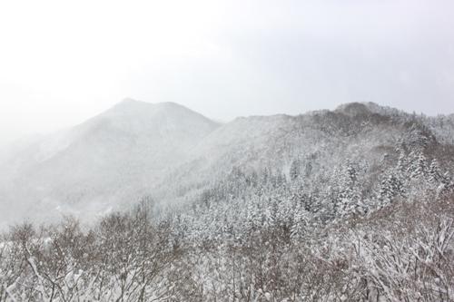白神山地・白銀遠景